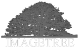 ImageTree